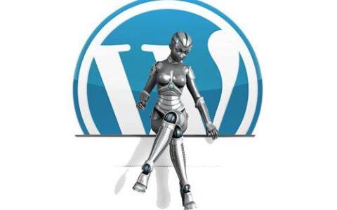 WordPress插件推荐:实现WordPress自定义头像功能